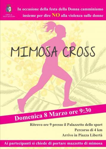 Mimosa Cross